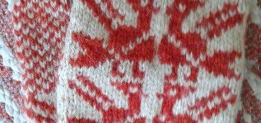 Alkuperäiset puna-valkokuvioiset kukkilintu-lapaset.