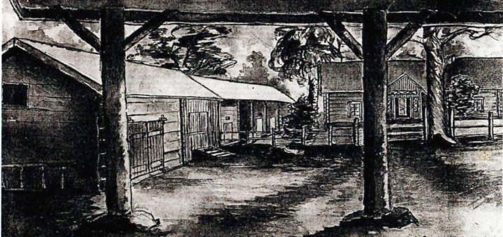 Pentti Kiiskin piirros Kotilan tilasta navetan katoksen alta katsottuna, vasemmalla aitat, oikealla päärakennus.