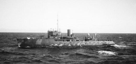 Miinalaiva Riilahti ja sisaralus Ruotsinsalmi rakennettiin Crichton-Vulcan –telakalla Turussa 1940. Miehistön vahvuus oli 60. Alukset olivat ennen kaikkea tehokkaita miinan laskijoita. Ennen tuhoutumistaan Riilahti ehti laskea runsaat 1700 miinaa ja 600 raivausestettä. SA-kuva