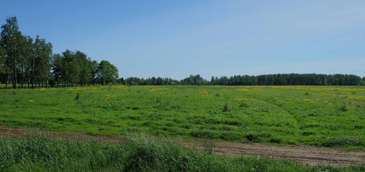 Tästä se alkoi – Valkeasaaresta tuli 9.-10.6.1944 maanpäällinen helvetti suomalaisille sotilaille. Kuva: Matti Hyvärinen